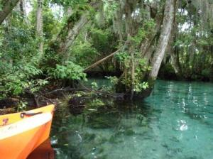 lg_Kayak-Crystal-River-Florida